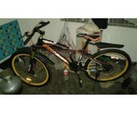 Duranta Stunt Cycle For Sale