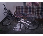 Prince Cycle For Sale